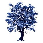 Albero MGS Blu